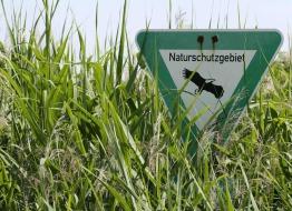 Naturschutzgebiet, Foto © Helge May, NABU