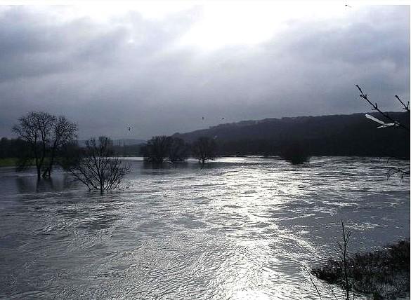 Hochwasser, Foto © U. Eitner