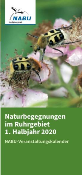 Naturbegegnungen im Ruhrgebiet 1. Halbjahr 2019