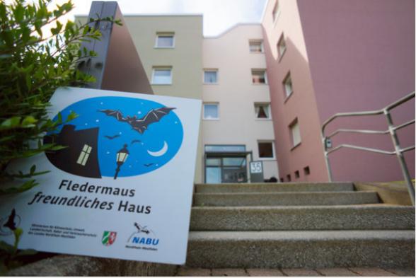 Eins der beiden ausgezeichneten Mehrfamilienhäuser in Essen - Foto: C. Bölke