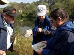 Untersuchung verschiedener Wasserpflanzen