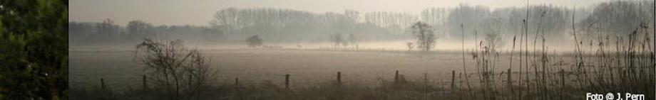 Morgennebel, Foto © J. Pern