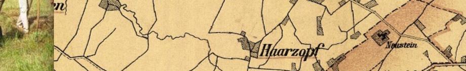 Ausschnitt Hist. Karte © Stadt Essen